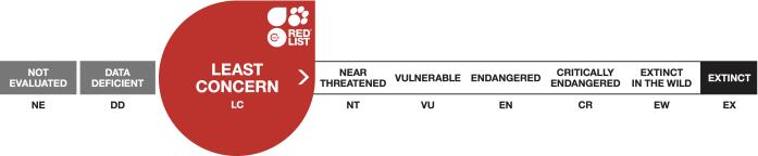 IUCN_LC