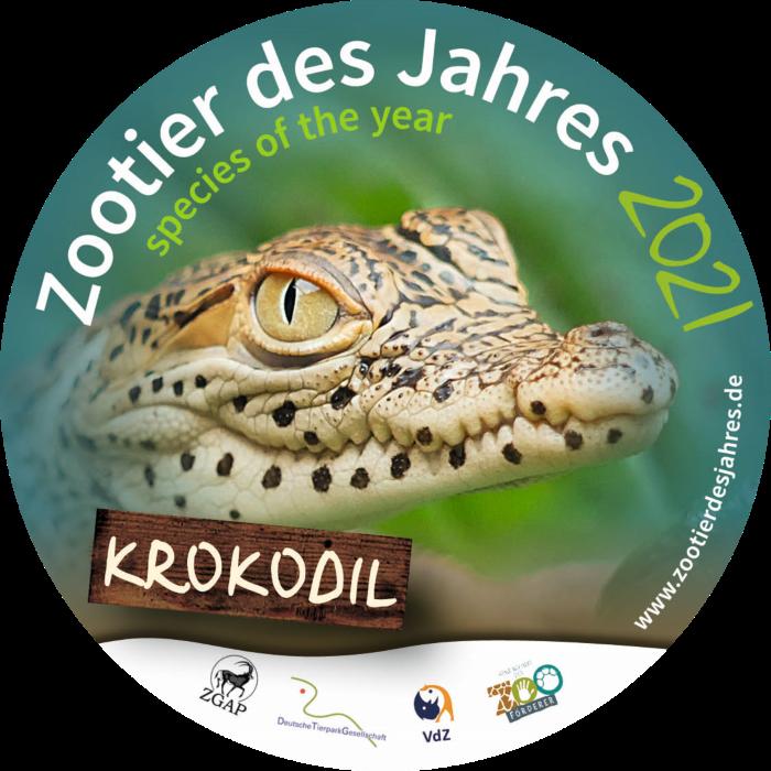 Zootier des Jahres 2021: Das Krokodil